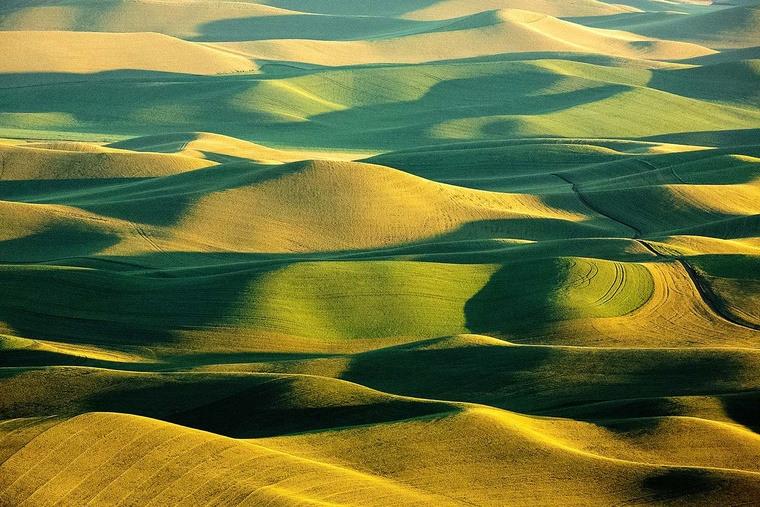 photos farmland wheat crops