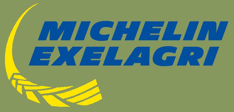mex logo 2017 bleu