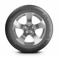 乗用車 タイヤ energy saver 側面