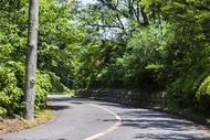 mem-shonan-mountain-road.jpg