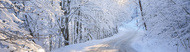 winter bg1