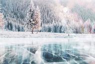 Oto Fon x ice north 4 background se Lastik