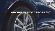 pilot sport 4 suv fr
