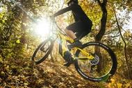 michelin bike mtb e wild rear grip