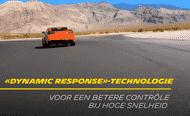 nl dynamic