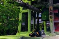 日蓮宗総本山 久遠寺 大鐘楼の朝勤の鐘つき