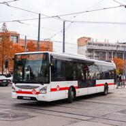 photo bus tcl